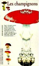 Duhem Bernard - Les champignons.