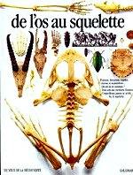 Parker Steve - De L`os Au Squelette