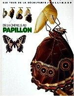 Whalley Paul - De la chenille au papillon.